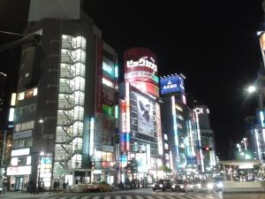 Alles is groot en veel in Tokyo.