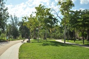 De Jardin de Turia biedt hardlopers, wandelaars en fietsers een uitgelezen mogelijkheid om te ontsnappen aan de verkeersdrukte van de stad.
